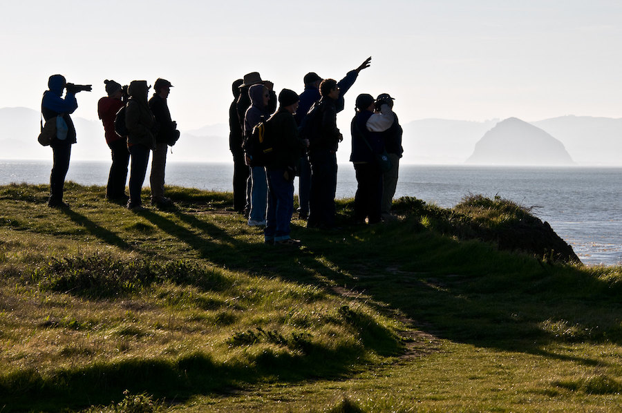 Birders at Estero Bluffs photo by Howard Ignatius