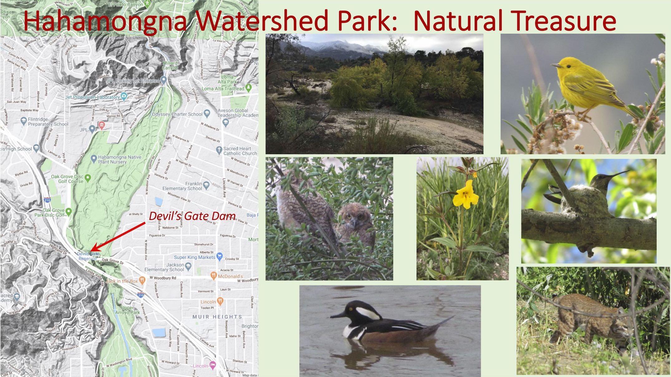 Hahamonga Watershed Park: A national treasure