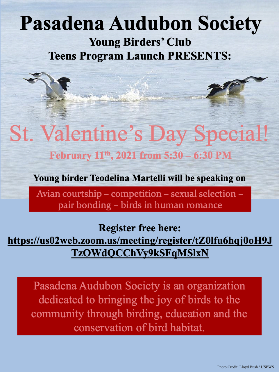 Young Birders Club TEENS Valentines meeting